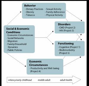 HAALSi - An eco-social framework